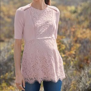NWT A Pea in the Pod Pink Lace Peplum Top